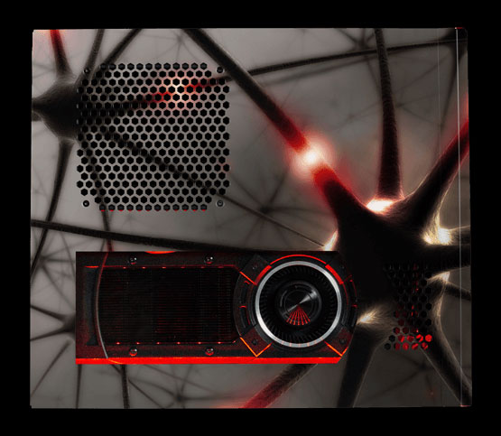 CHRONOS in Neurons